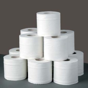 Authenticity coaching and consultancy - toilet paper